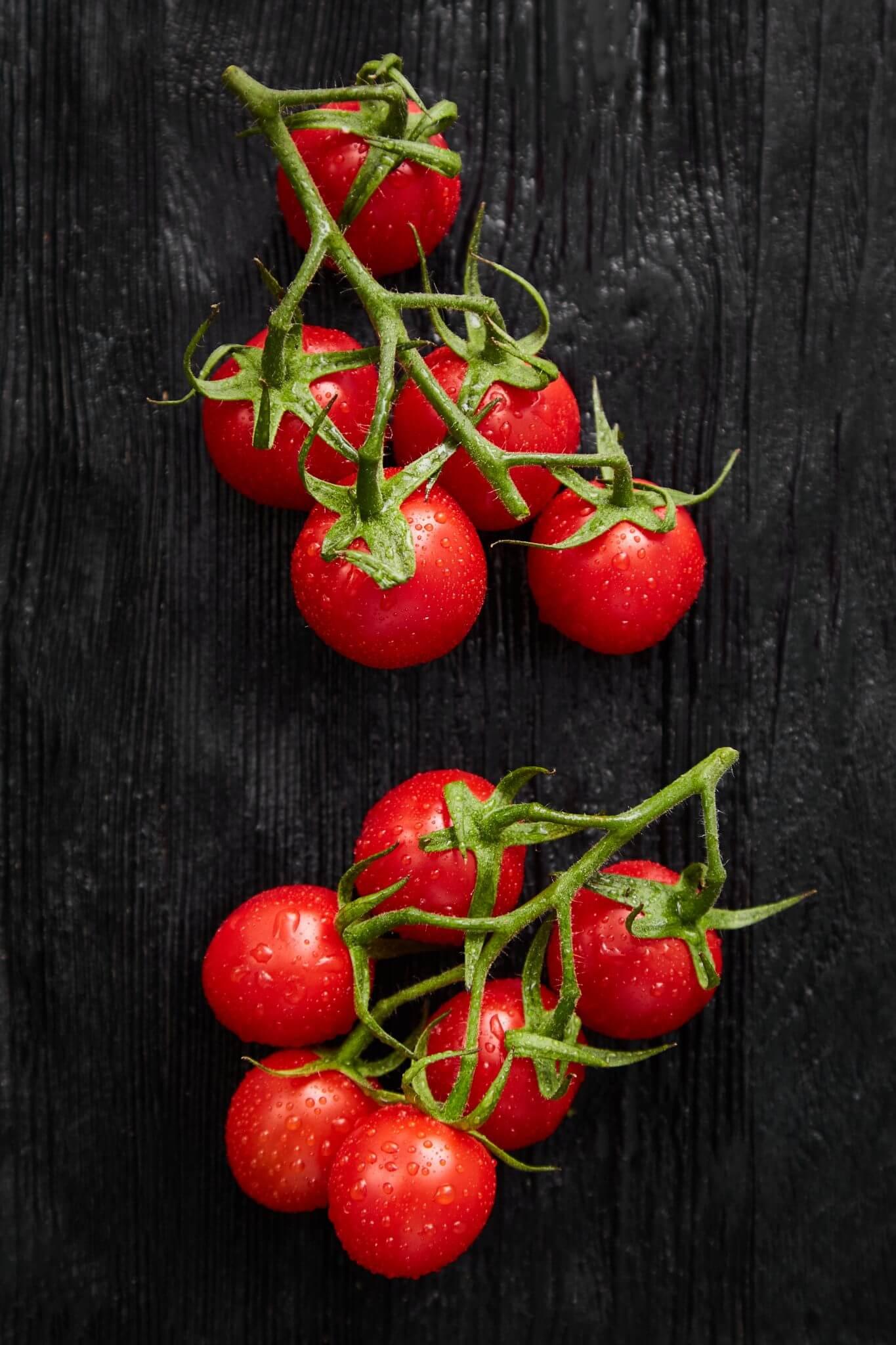 Teoria - Warzywa - Pomidor