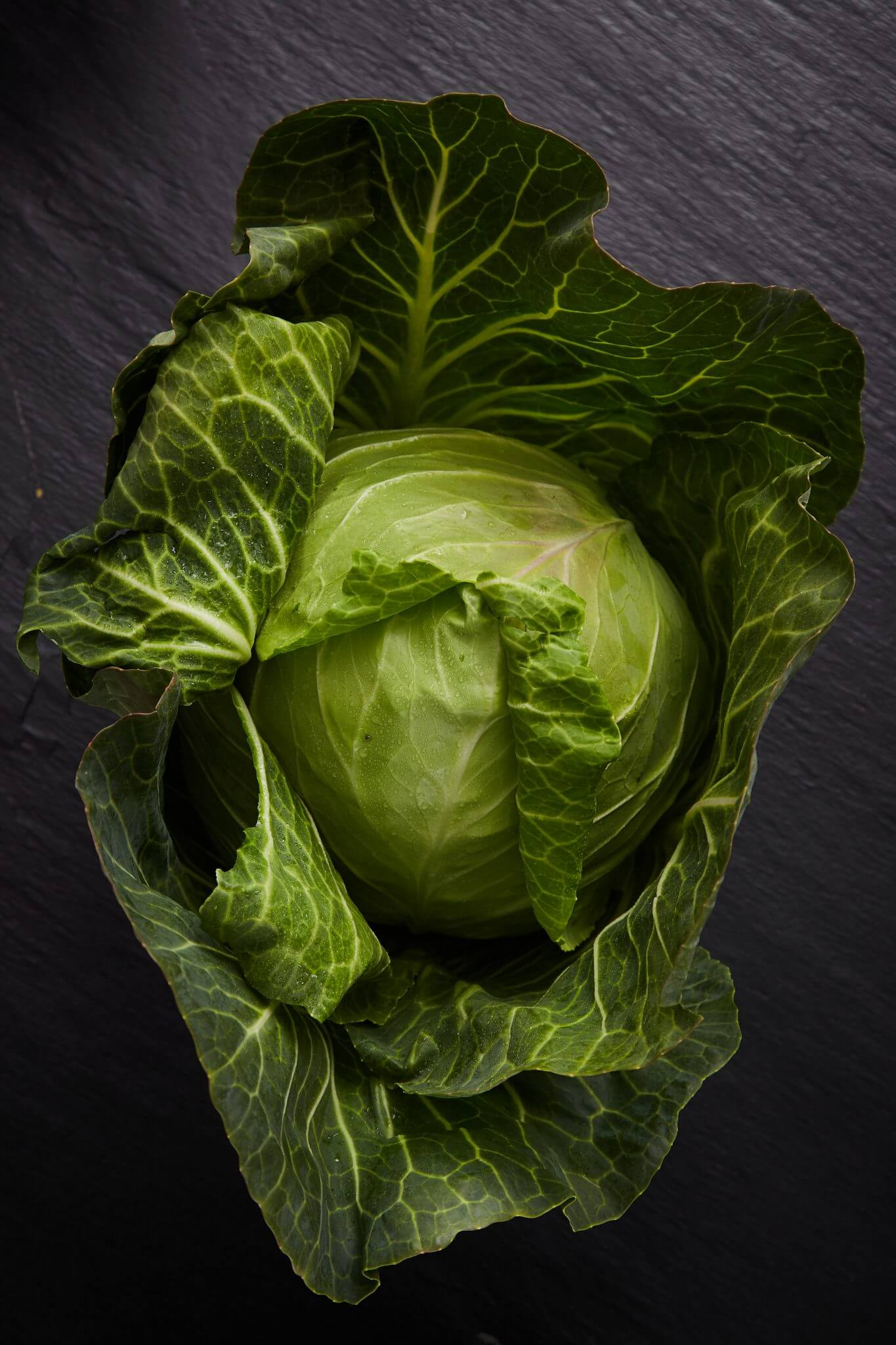 Teoria - Warzywa - Kapusta