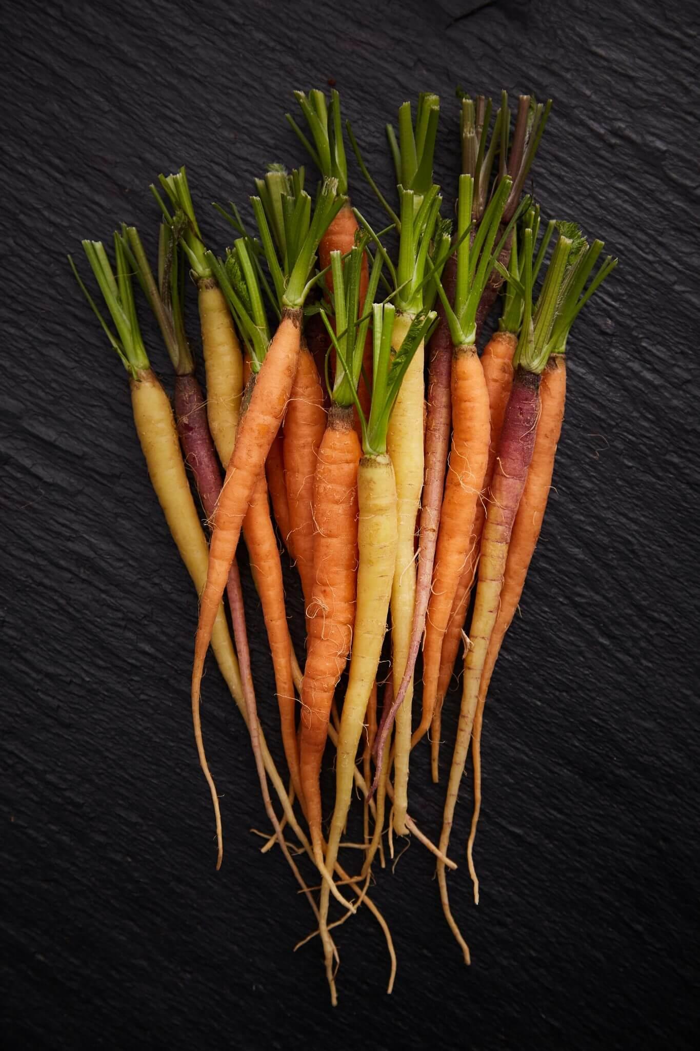 Teoria - Warzywa - Marchew
