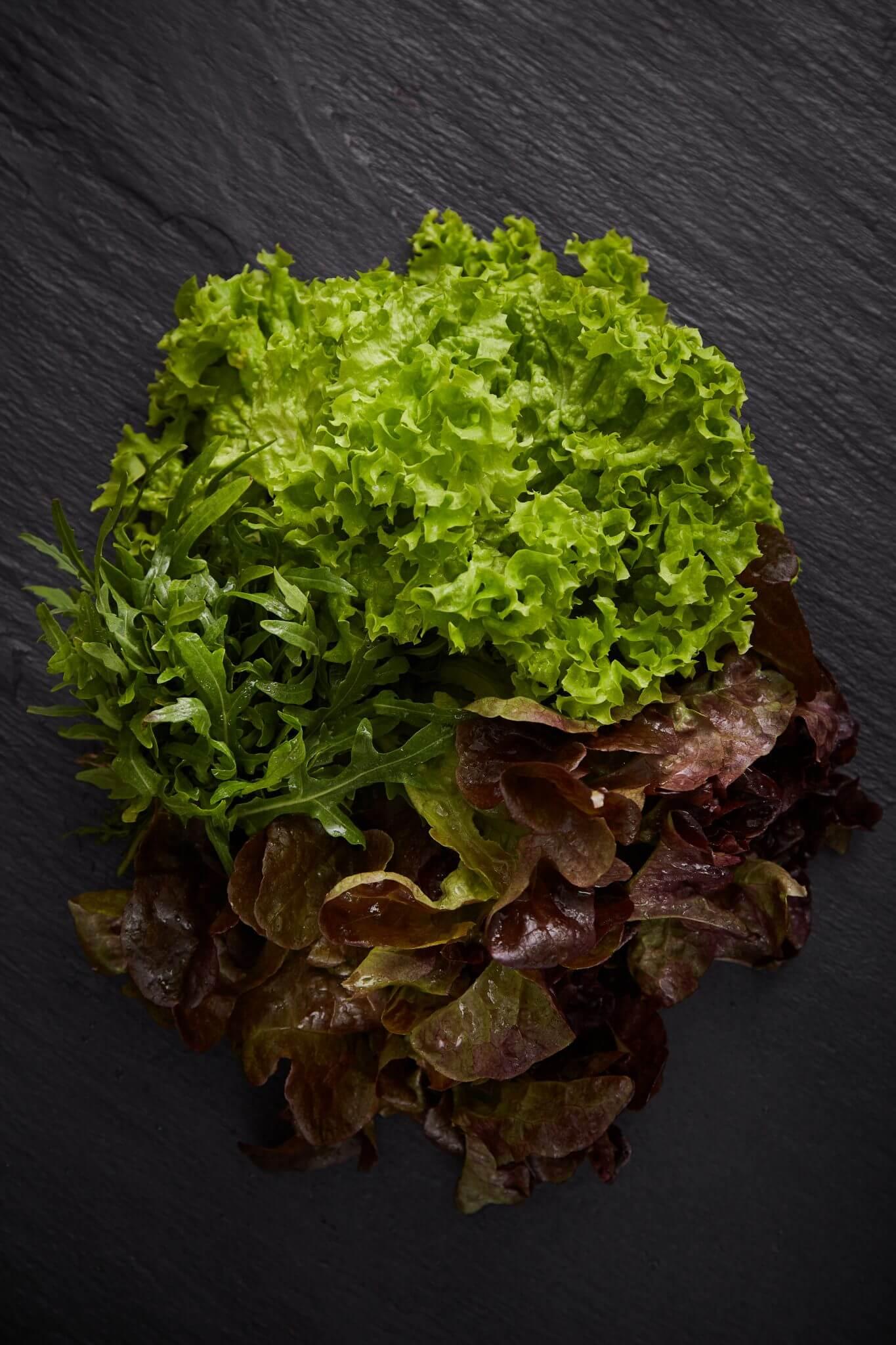 Teoria - Warzywa - Sałata